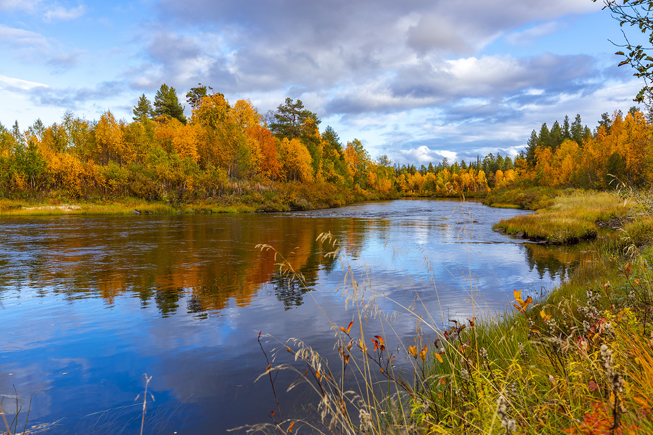 Autumn colors in Muonio area, around Ounasjoki, Lapland, Finland
