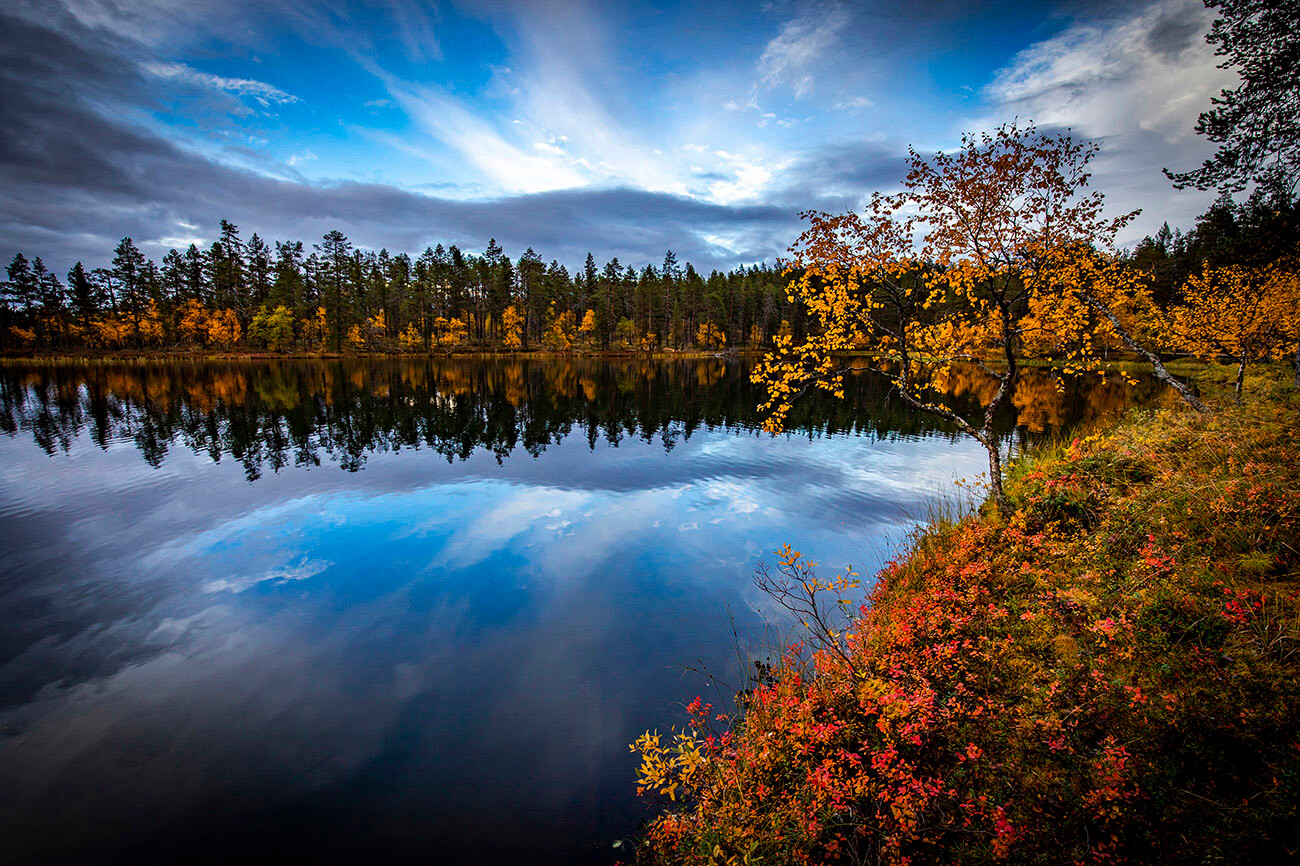 Autumn colors in Lapland, Finland
