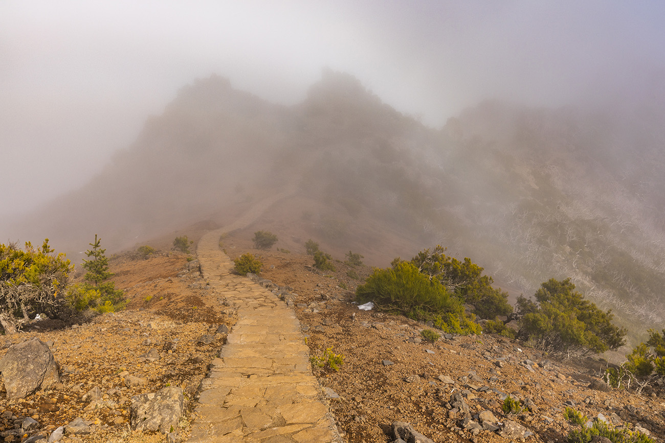Trail that leads to Pico Ruivo, Madeira
