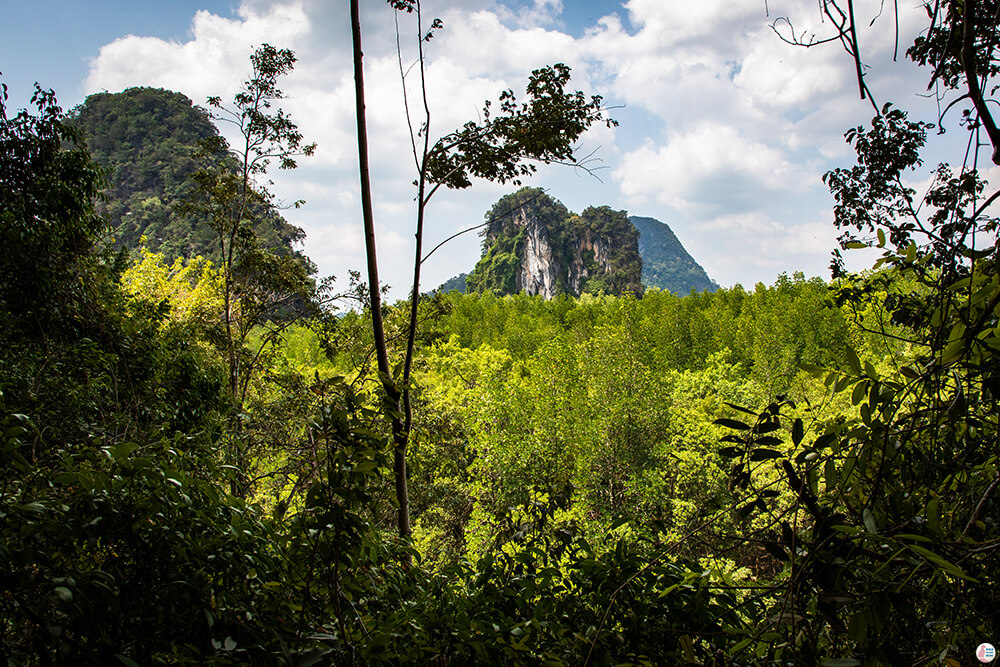 Phi Hua To Cave Viewpoint, Than Bok Khorani National Park, Krabi, Thailand