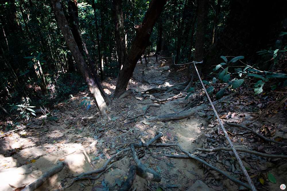 Steep descend at Khao Ngon Nak Hiking Trail (aka Dragon Crest), Krabi, Thailand