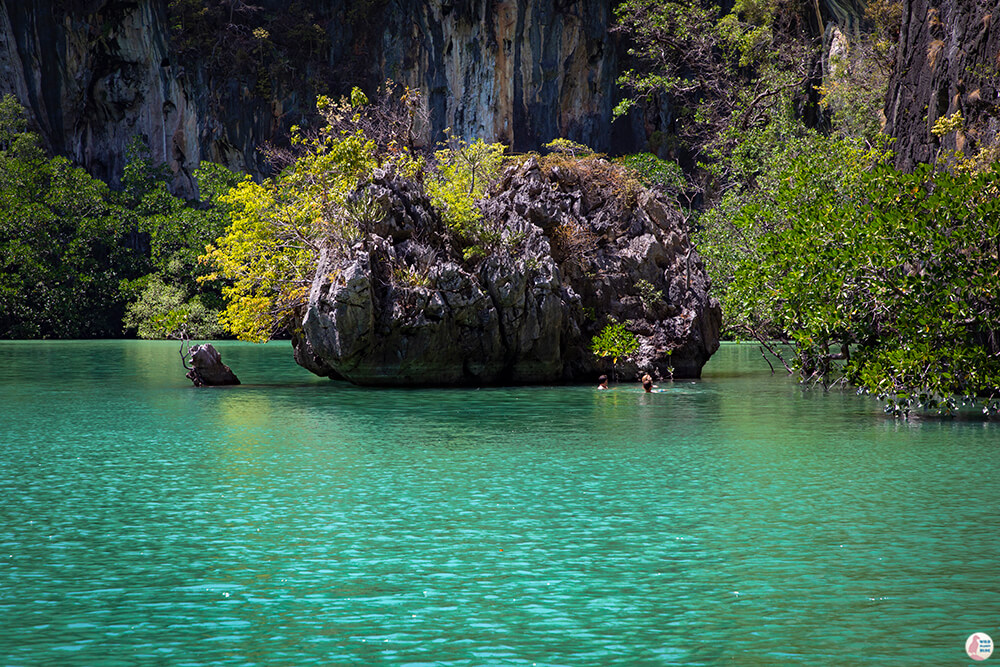 Swimming in the Hong Island Lagoon, Hong Islands, Krabi Province, Thailand