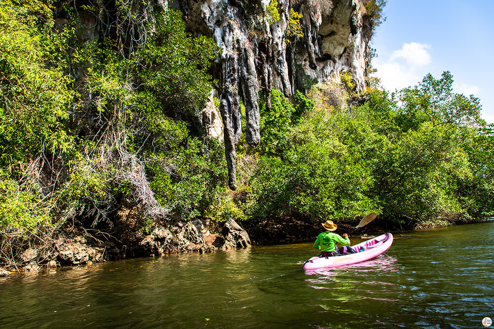 Limestone cliffs along Tha Pring River, Than Bok Khorani National Park, Krabi, Thailand