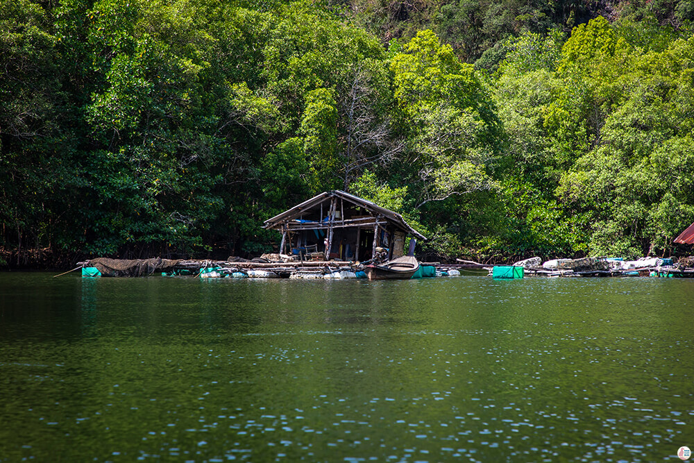 Floating fishing hut on the Tha Pring River, Than Bok Khorani National Park, Krabi, Thailand