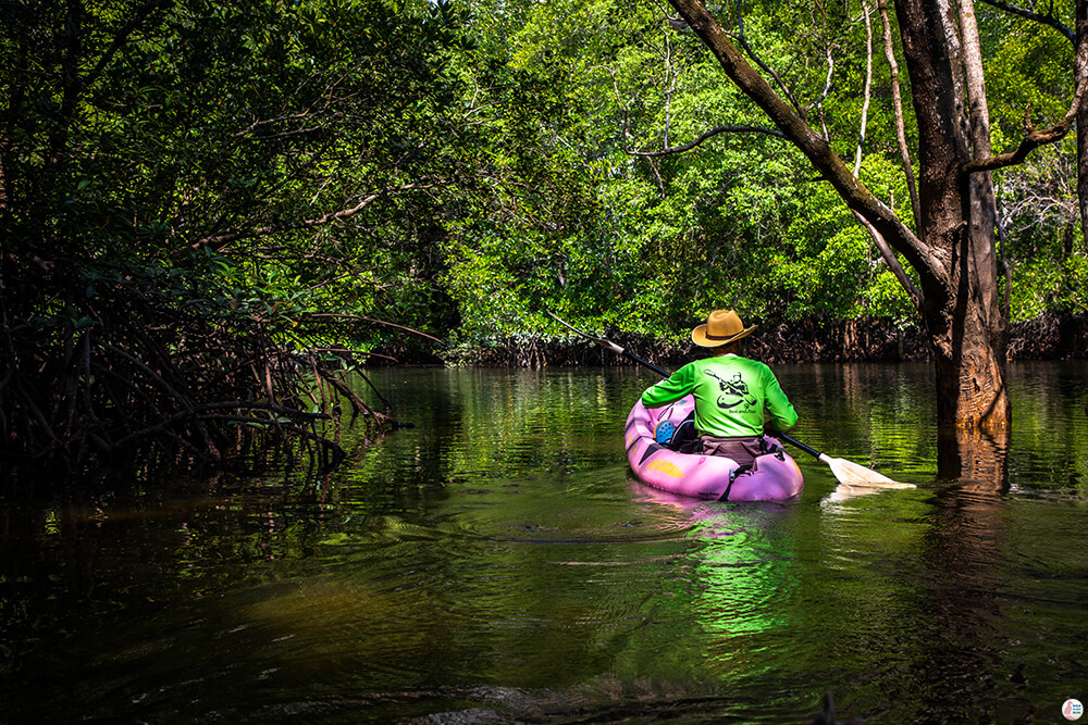 One Day Kayaking in Than Bok Khorani National Park, Krabi, Thailand